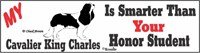 Cavalier King Charles Honor Student Bumper Sticker