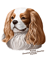 Cavalier King Charles T Shirt - Proud Parent