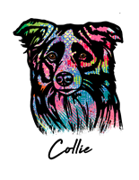 Collie T Shirt Colorful Abstract