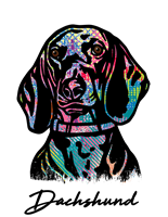 Dachshund T Shirt Colorful Abstract