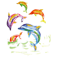 Dolphin T Shirt Dolphins Jump
