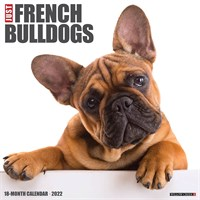 2012 Favourite French Bulldog By Myrna Calendar