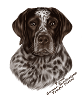German Shorthaired Pointer T Shirt - Proud Parent