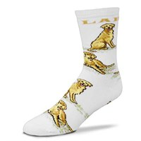 Golden Lab All Over Socks