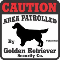Golden Retriever Bumper Sticker Caution