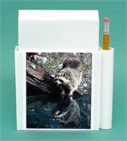 Raccoon Note Holder