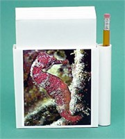 Seahorse Note Holder