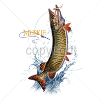 Muskie T Shirt Colorful Detail