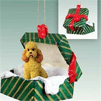 Poodle Gift Box Christmas Ornament Apricot Sport Cut