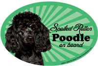Poodle Black Car Magnet - Spoiled Rotten