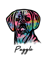 Puggle T Shirt Colorful Abstract