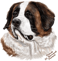 Saint Bernard T Shirt - Proud Parent