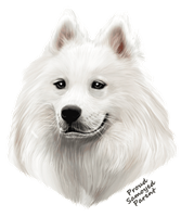 Samoyed T Shirt - Proud Parent