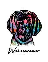 Weimaraner T Shirt Colorful Abstract