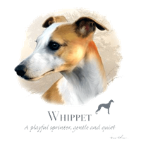 Whippet T Shirt by Howard Robinson